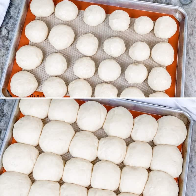 shaping dinner rolls and letting them rise