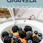 healthy granola with blackberries and fruit